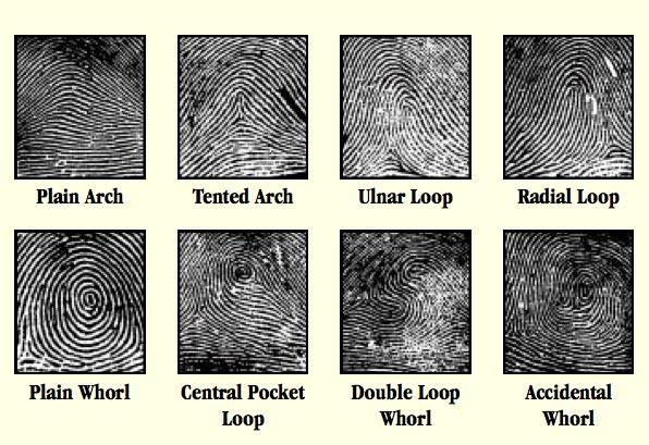 Huellas dactilares...conceptos e imagenes